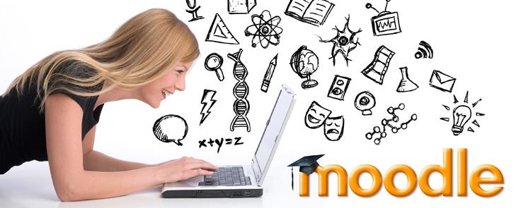 wunderschˆne junge Frau arbeitet am Laptop